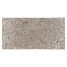 Platinum Gray Natural Quartzite Tile