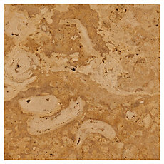 Natural Semi-Polished Coral Stone Tile